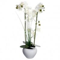 Орхидея в саксия 53 см. - La Maison