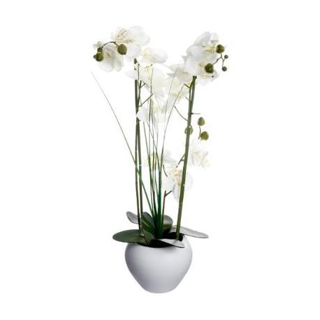 Орхидея в саксия 53 см.- La Maison