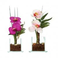 Орхидея със стъклена ваза - La Maison